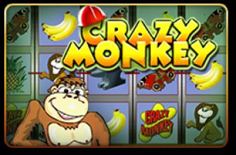 Slot Machine Gorilla Recesnione e Bonus