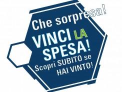 Vinci Spesa al Sumermercato Gratis